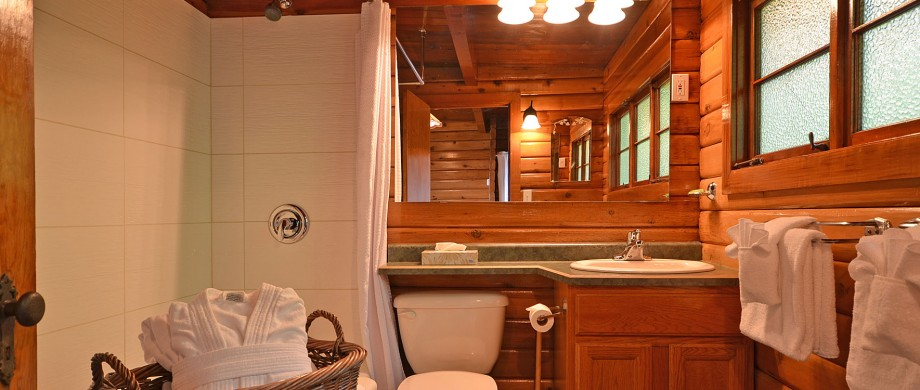 point no point resort cabin 2 bathroom